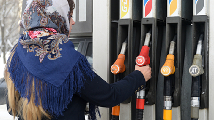 С бензином лезут псы!: В России хотят запретить импорт дешёвого топлива. Шнуров нецензурно поддел