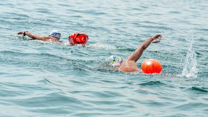 Спортсмены наглотались нефтепродуктов во время заплыва в Геленджике