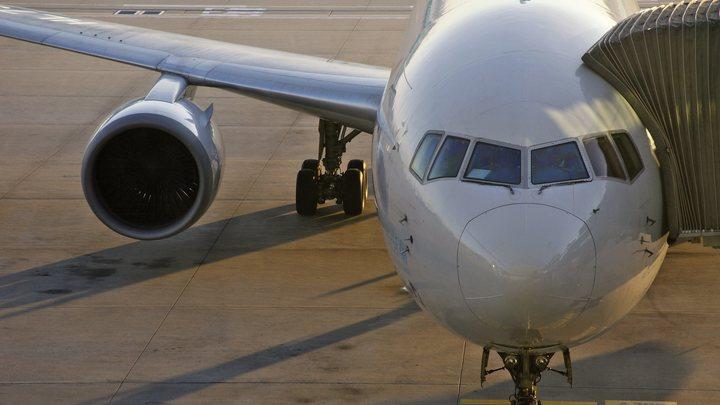 В Анталье на 10 часов задержали рейс в Москву из-за столкновения самолета с птицей