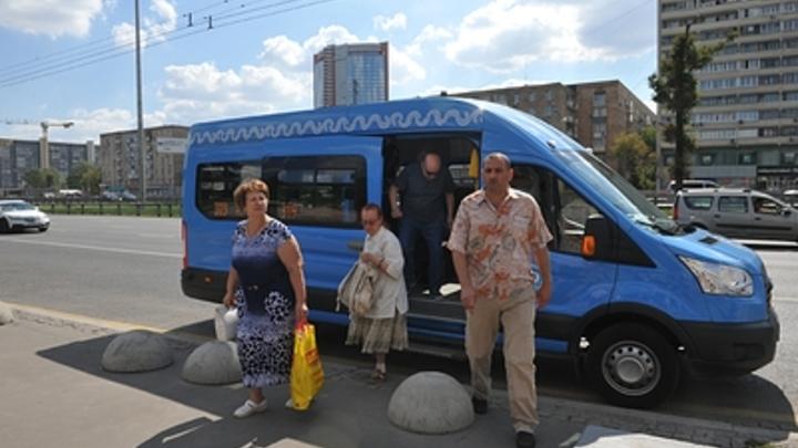 Юлий Цезарь за рулём: В Новосибирске водитель управлял маршруткой и читал
