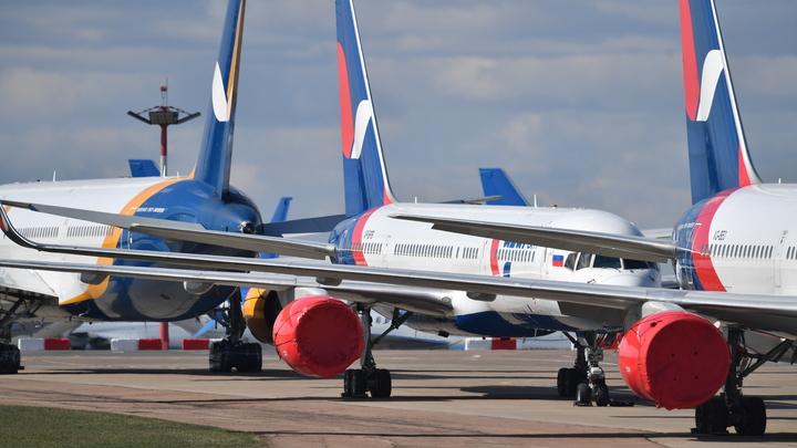 Сидеть на месте, одежду снимать: Как могут измениться правила авиаперевозок в РФ после коронавируса