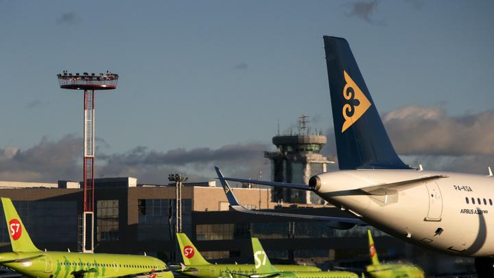 Авиадебоширы задержали рейс из Новосибирска в Москву. Пассажиры помогли полиции их усмирить