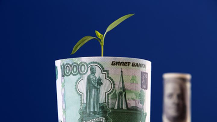 Экономист предупредил о грозящем падении доходов населения России