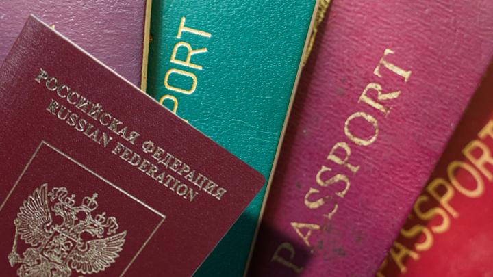 От Галкина до Познера: кого не удовлетворяет российский паспорт