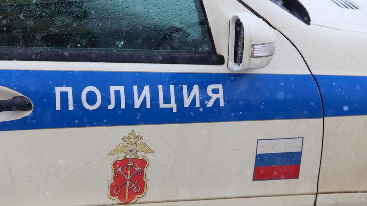 В Новосибирске таксист на Kia Rio сбил двоих детей