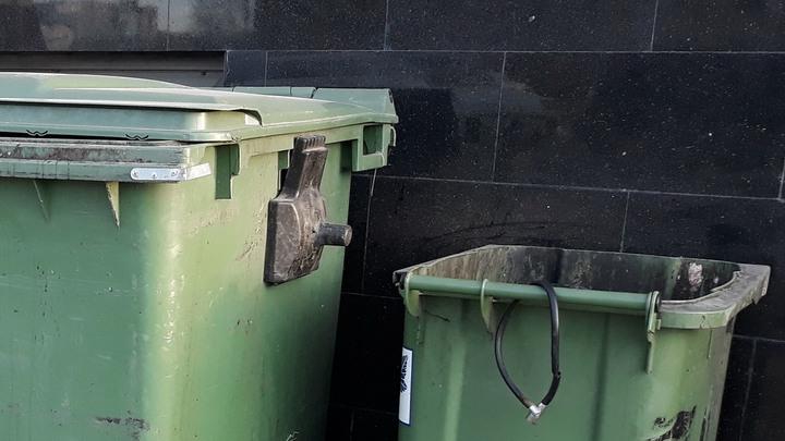 Синдром Плюшкиной: Жительница Новосибирска травила соседей накопленными в квартире горами мусора