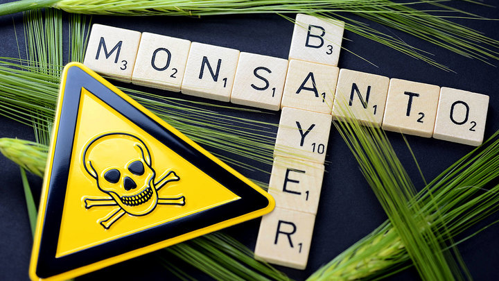 Решение ФАС о слиянии Bayer и Monsanto уничтожит российский агропром