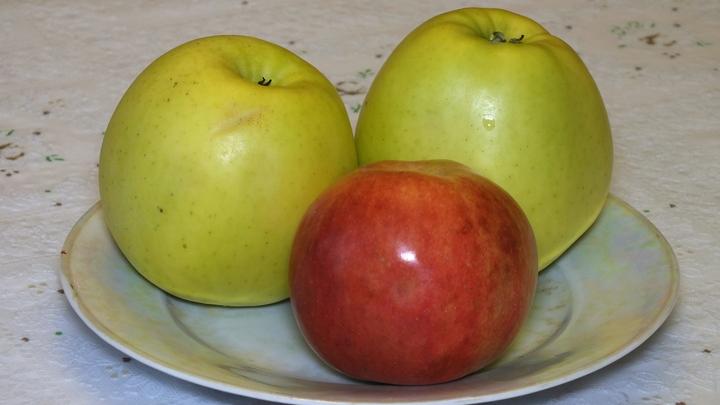 Проверили лично: Белорусские яблоки добавили в белый список после рейдов по складам и садам