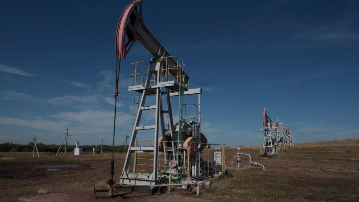 Бесплатную нефть заказывали?: Падение цены на нефть WTI на 100% всколыхнуло интернет