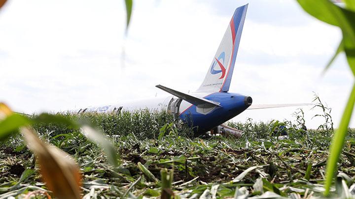 Вы где?: Эксперт нашёл странность в разговоре диспетчера с самолётом, шедшим вдоль кукурузы