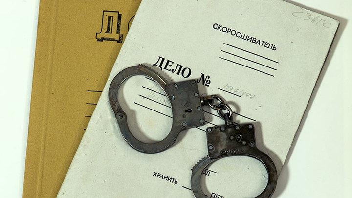 «Барнаульская весна»: дело Мотузной о мемах «ВКонтакте» вернули прокурору