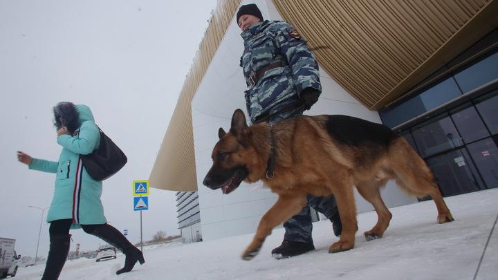После провала в Керченском проливе этого можно было ожидать: Эксперты об «украинском следе» в минировании ТЦ Москвы