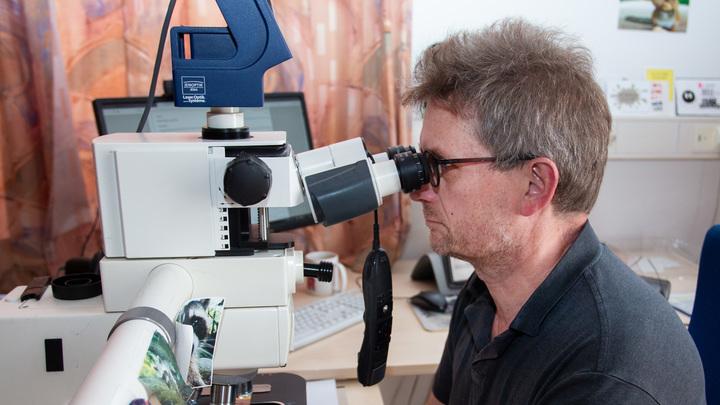 Учёные выяснили, как именно заражает коронавирус. Дело в зловещих щупальцах