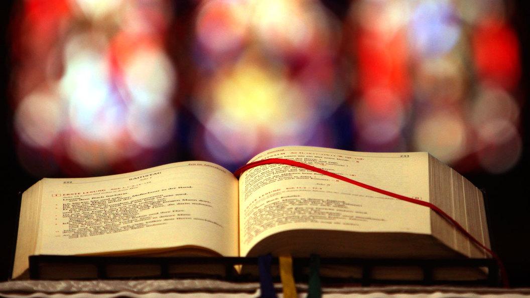 Ученые как первоклассники и идолопоклонники