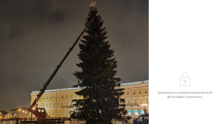 «Уже месяц закончился?»: на Дворцовой площади разбирают главную новогоднюю елку Санкт-Петербурга