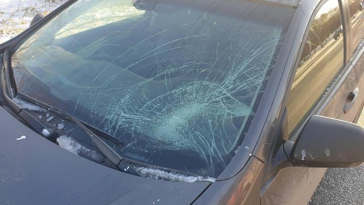 В Челябинске за сутки в ДТП пострадали четыре женщины