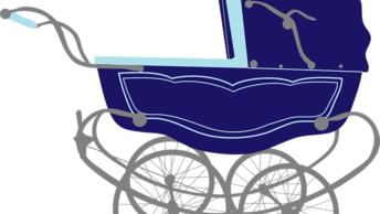 Схватила коляску и убежала: Под Петербургом ищут похищенного младенца