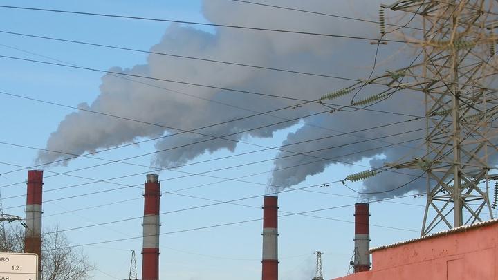 Новосибирская область вышла в лидеры по выбросам бензапирена в России