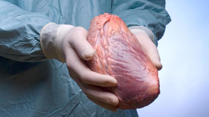 Российские учёные открыли вещество, способное спасти сердце