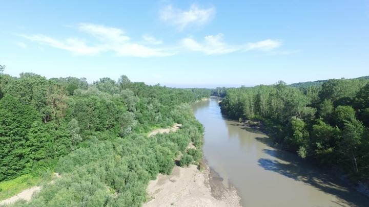 Что известно об исчезновении детей, упавших в реку Пшеха, под Апшеронском