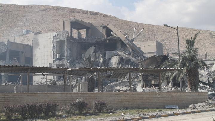 В Германии рассказали, как удалось отвертеться от ударов по Сирии