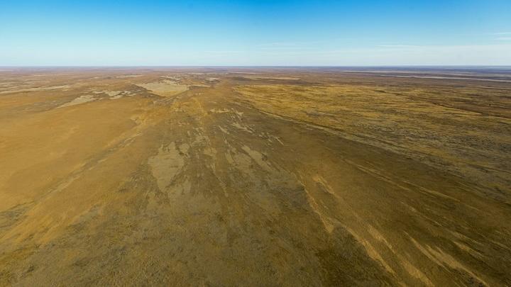 В Ростовскую область в ближайшие выходные придут заморозки