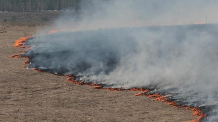 О риске возникновения пожаров предупреждают синоптики из-за жаркой погоды в Кузбассе