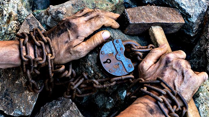 Пятнадцать рабов в день: Вопль из коробки с помидорами вскрыл страшное