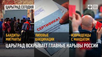 Бандиты-мигранты, липовые вакцинации, извращенцы с мандатом: Царьград вскрывает главные нарывы России