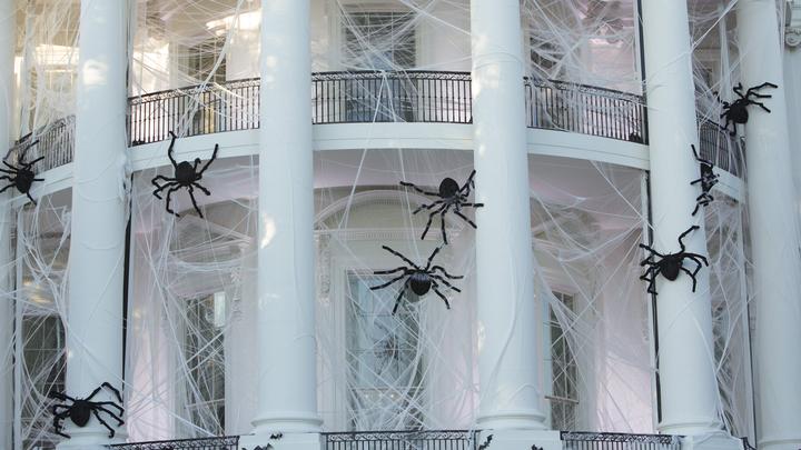 СМИ: Администрация президента США жалуется на вредителей внутри Белого дома