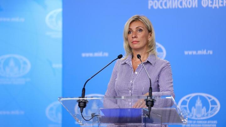 Железобетонный аргумент: Захарова оценила санкции МИД Литвы против Лукашенко