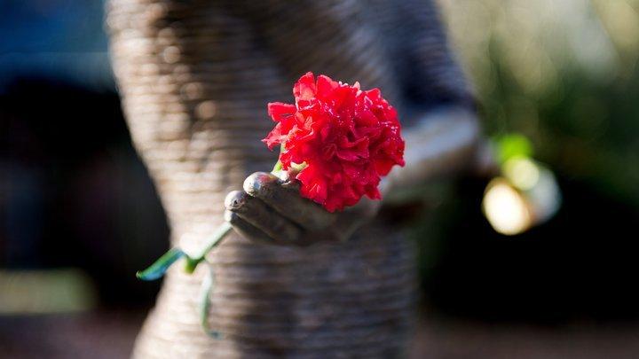 От частных кладбищ до запрета ритуальщиков в больницах: Детали законпроекта О похоронном деле