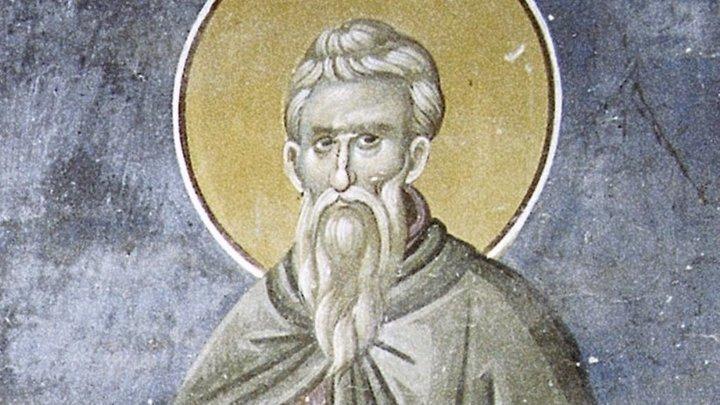 Старец, изгонявший бесов. Преподобный Иларион Великий. Церковный календарь на 3 ноября