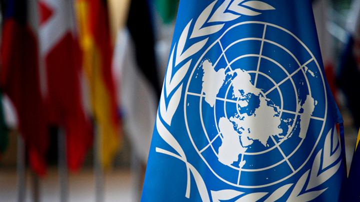 Василий Небензя провёл в Совбезе ООН урок истории для «западных партнёров»