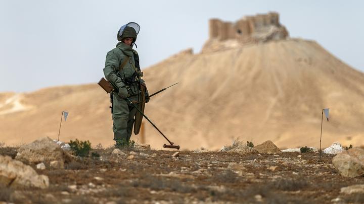 В Сирии российские саперы обезвредили почти 2000 опасных предметов
