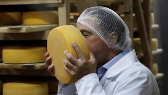Сыр для сексистов, или как из коров делают феминисток