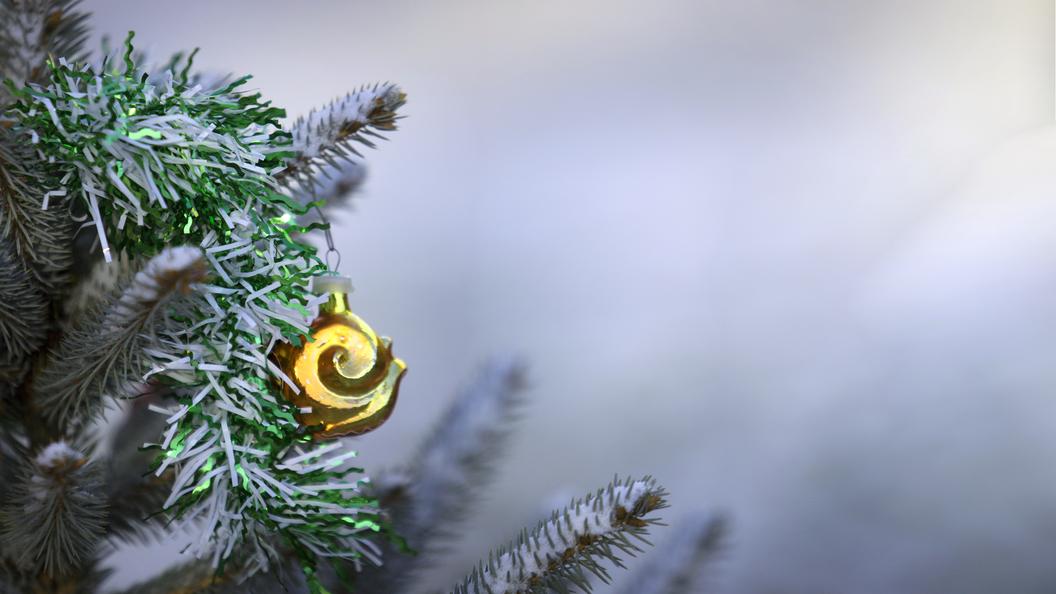 Госдума не стала лишать жителей России новогодних каникул