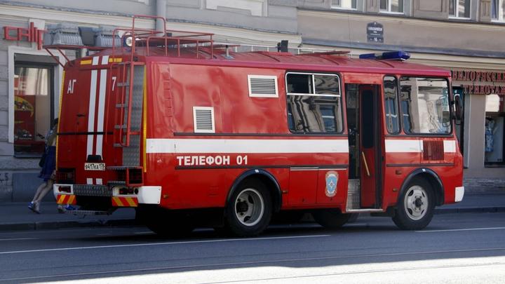 В Петербурге вспыхнул пассажирский автобус на Планерной улице