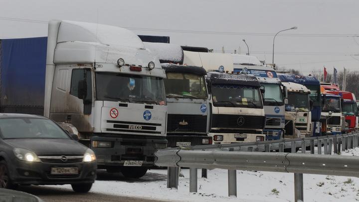 Полицейские сырником накормили: Беседу с перекрывшим дорогу дальнобойщиком в Москве опубликовали Baza