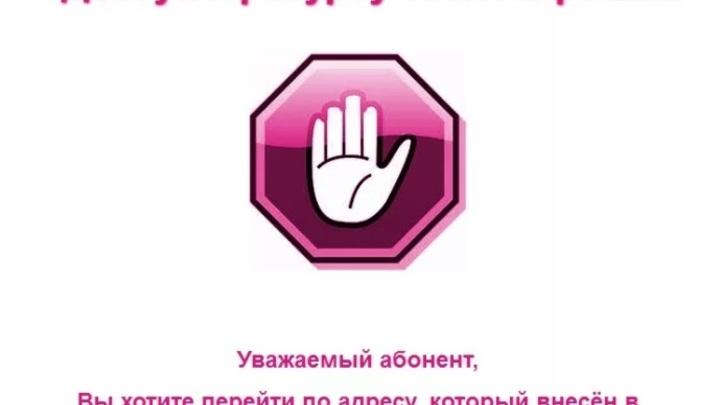 В Чите заблокировали три сайта с запрещенным уголовным контентом