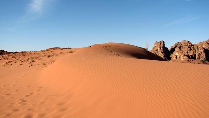 Как модель из США оказалась посреди пустыни в ящике с цементом: Раскрыта судьба Эсмеральды Гонсалес
