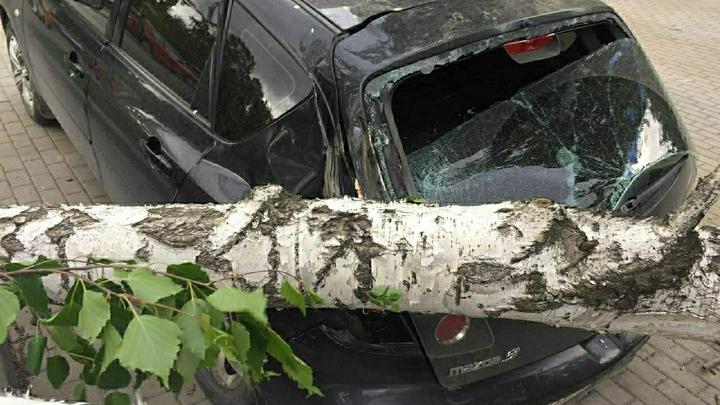 Жара в Свердловской области может сопровождаться грозами и шквалистым ветром