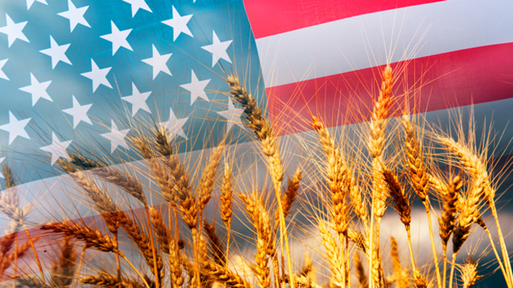Действительно ли американские фермеры испугались российской пшеницы?