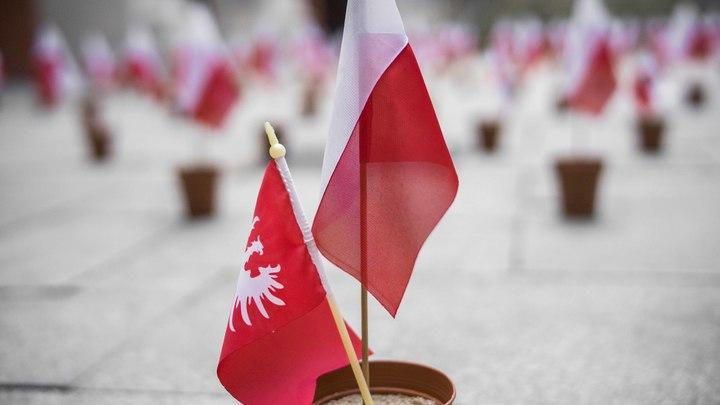 Вырваны из контекста: Главный раввин Польши решил защитить антисемитскую свинью и сволочь