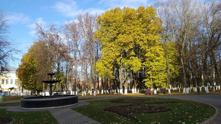 Погода во Владимирской области в выходные 18 и 19 сентября: Мороз и солнце