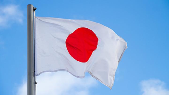 Япония не хочет мира и мешает российскому бизнесу на Курилах