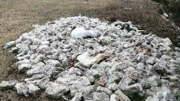 В нижегородском лесу нашли свалку из испорченного хлеба