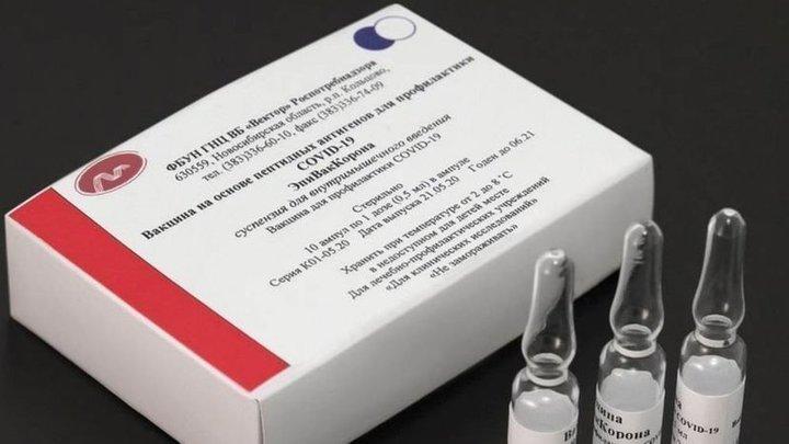 Петиция в защиту новосибирской вакцины ЭпиВакКорона появилась в Сети