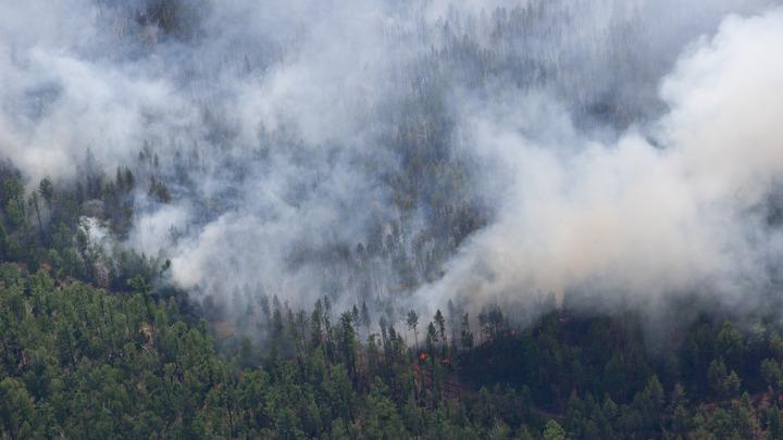 Лесной пожар в Крыму тушат 110 спасателей, решается вопрос о привлечении авиации