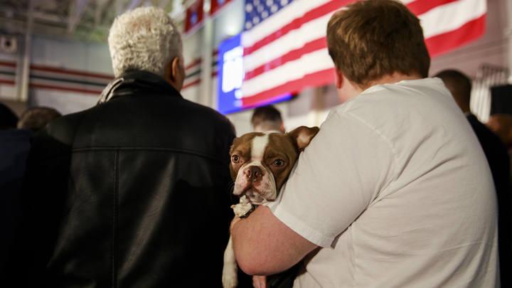 Собака Байдена извинилась перед хозяином - американцы взревели от умиления